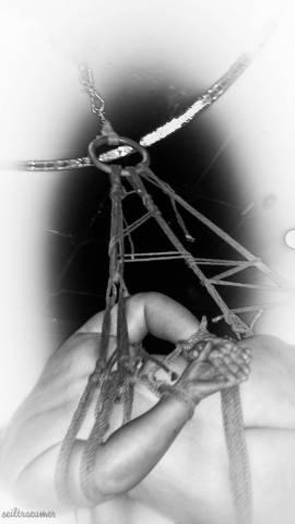 Eintrittskarte BoFeWo Fessel-Workshop - Seilträumer - Bild vergrößern