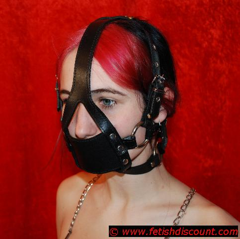 Muzzle-Gag Harness